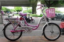 Xe đạp trẻ em Alipu 20